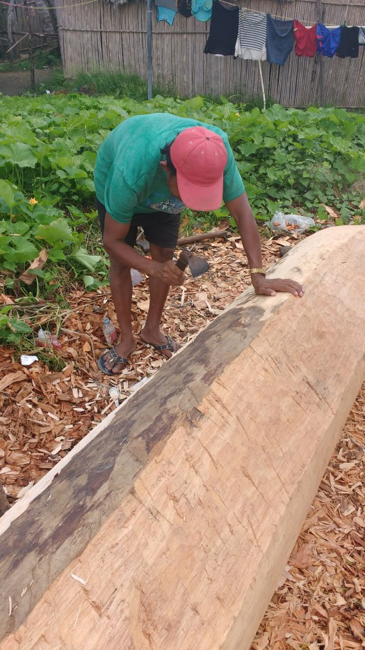 a man building his new ULU- a dugout canoe, with hand tools