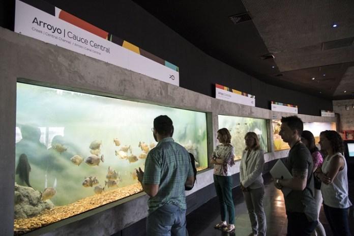 Acuario del Río Paraná , un mega acuario para conocer todos sus peces