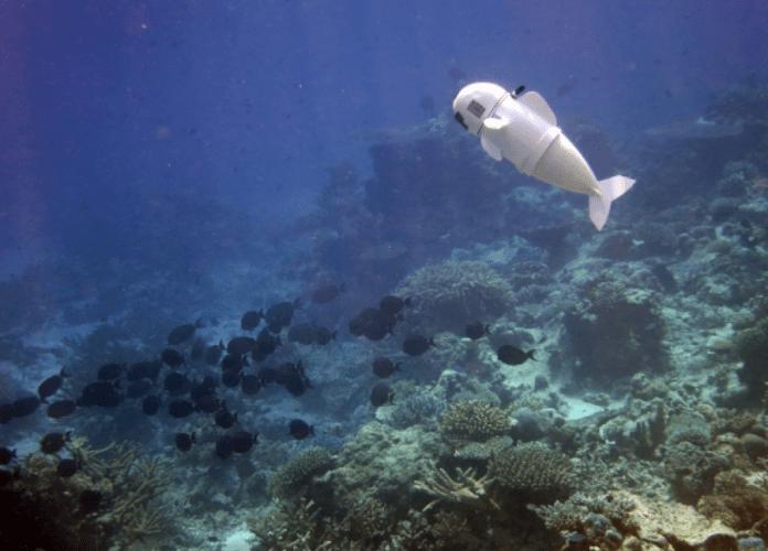 SoFi, el pez robot submarino