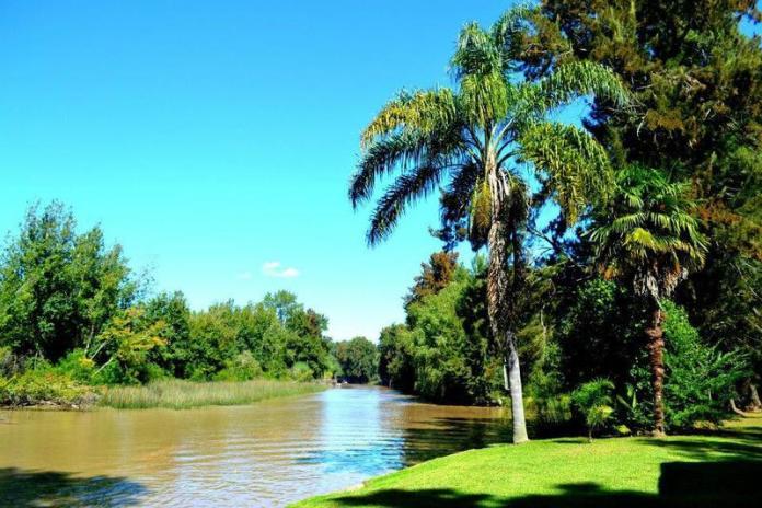 Delta del Tigre