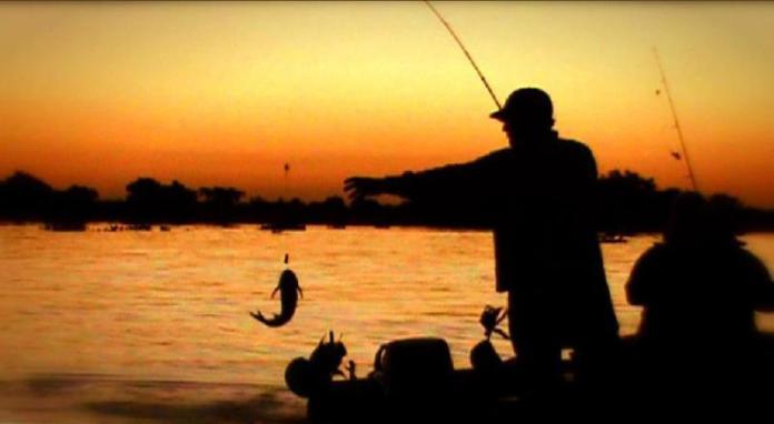 Pesca: Grandes piezas en el río Paraná