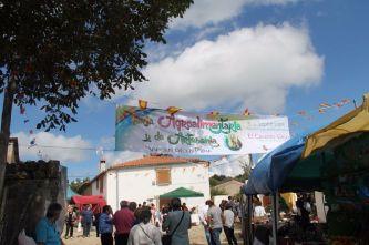 Feria Casarito Viejo (21)