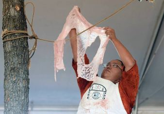 Navajo Times   Ravonelle Yazzie Miss Navajo contestant Kayla Martinez hangs the ak'ah on the rope to dry during the butchering on Monday in Window Rock.