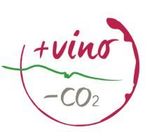 +VINO-CO2