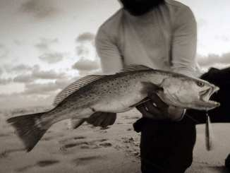 Kayak Fishing for Speckled Trout