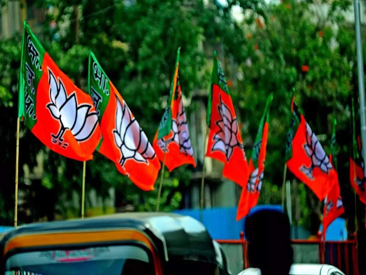 Assembly elections: BJP appoints ministers in charge