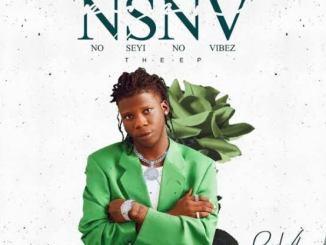 Seyi Vibez – Over Sabi Mp3