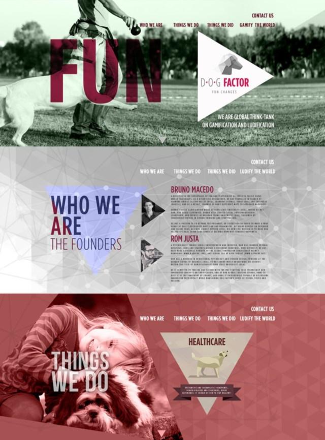 portfolio-DogFactor-Navegin