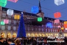 plaza-mayor-arbol-azul