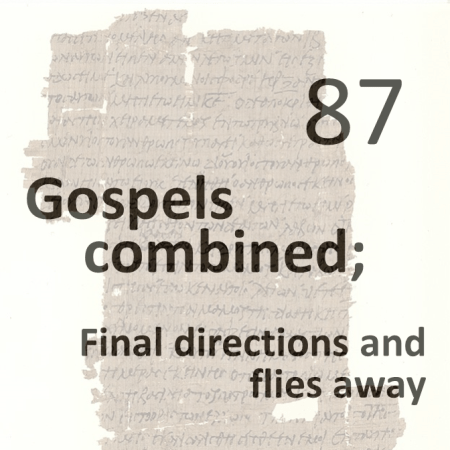 Gospels combined 88 - final directions and flies away