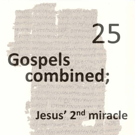 Gospels combined 25 - jesus 2nd miracle