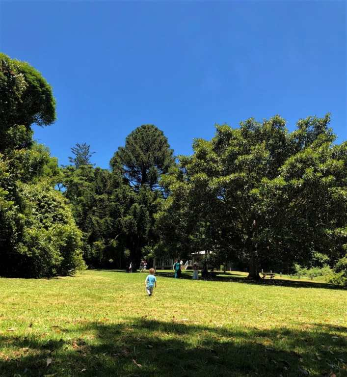 Mailala Bushwalks Maiala Park
