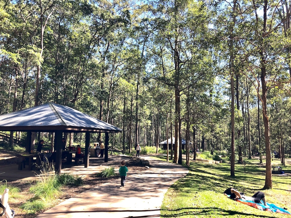 Daisy Hill conservation park picnic shelters