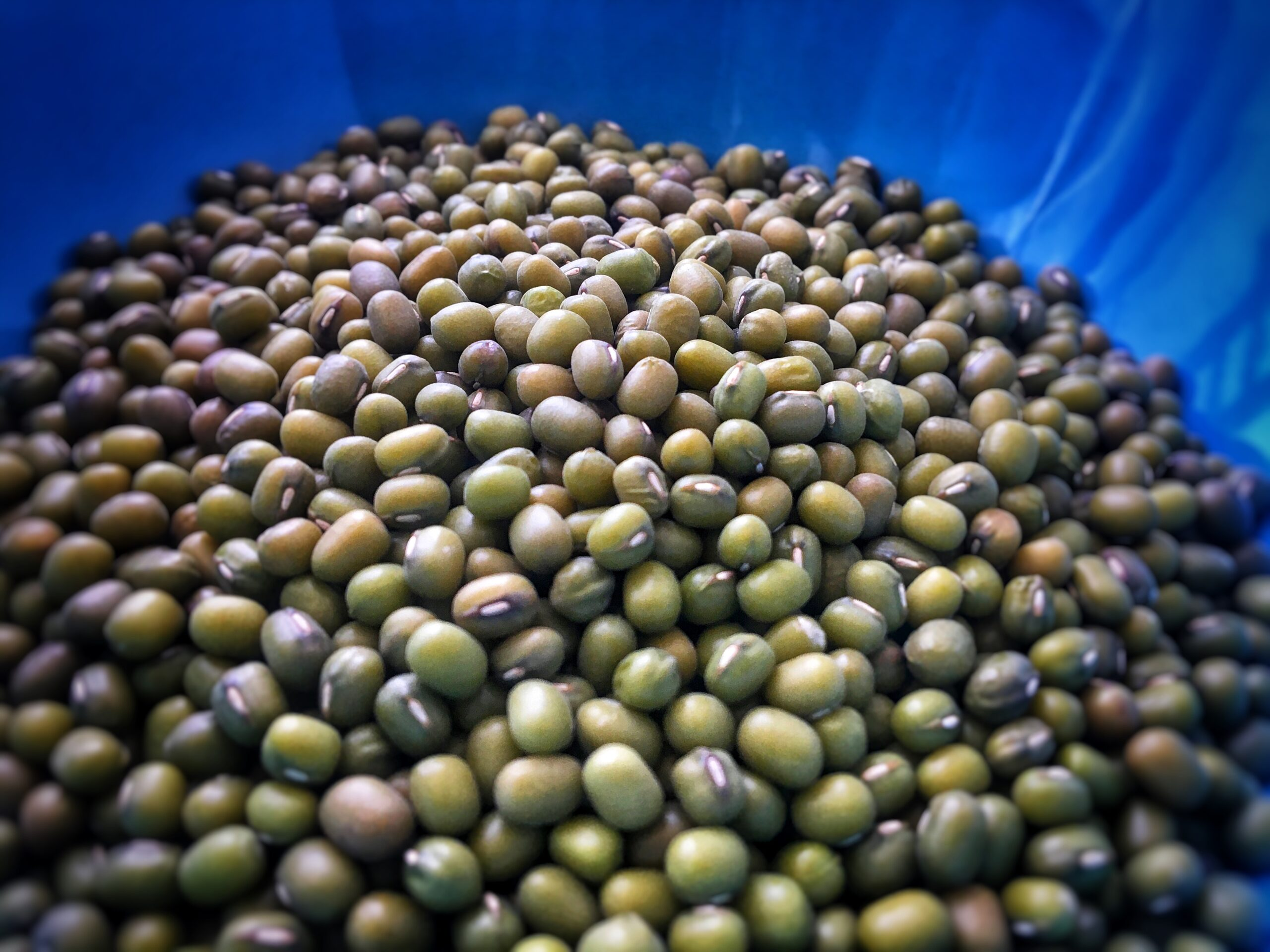 Navigating This Space – How To Cook A Tasty Mung Bean Soup