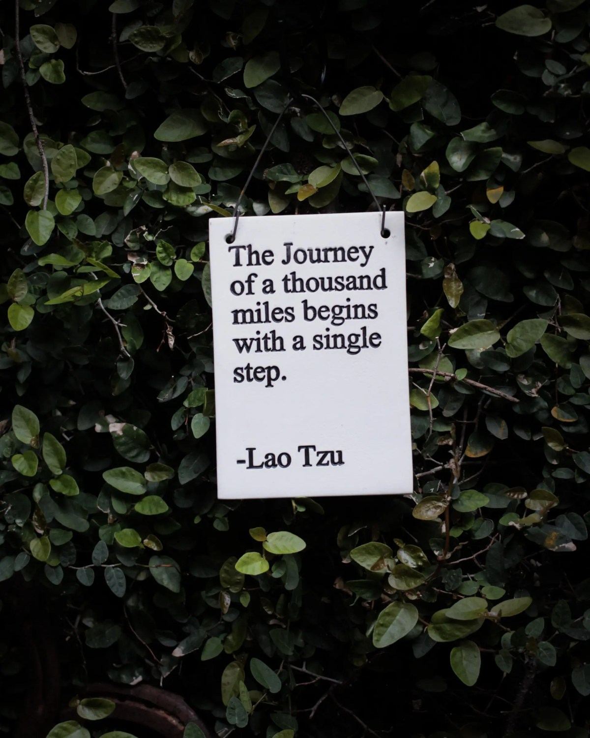 The journey of a thousand miles begin with a single step - Lao Tzu in regards to success