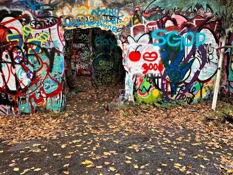 Welwyn Preserve, graffiti.