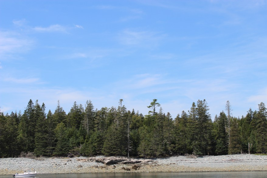 Schoodic Island, Bar Harbor's Puffin and Lighthouses Cruise.