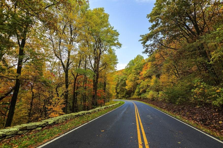 Shenandoah National Park, fall foliage in the US