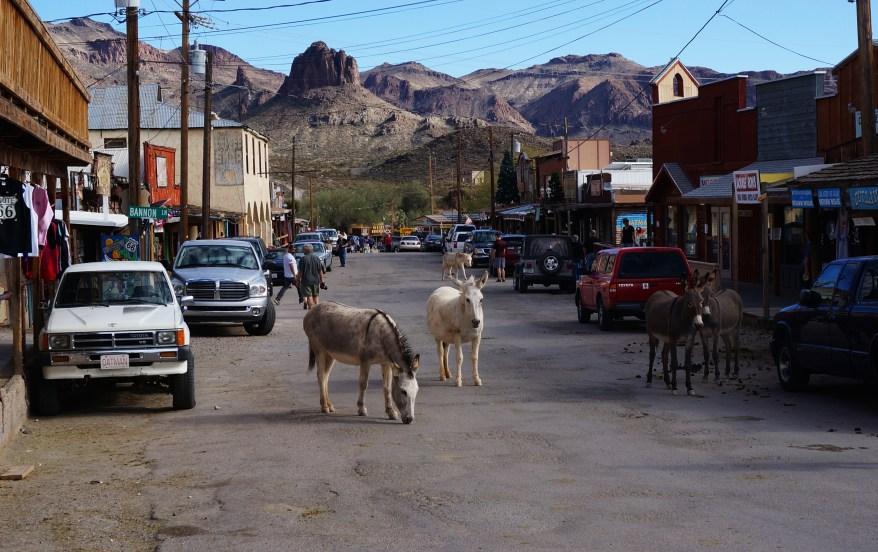 oatman, AZ, family friendly journey along route 66