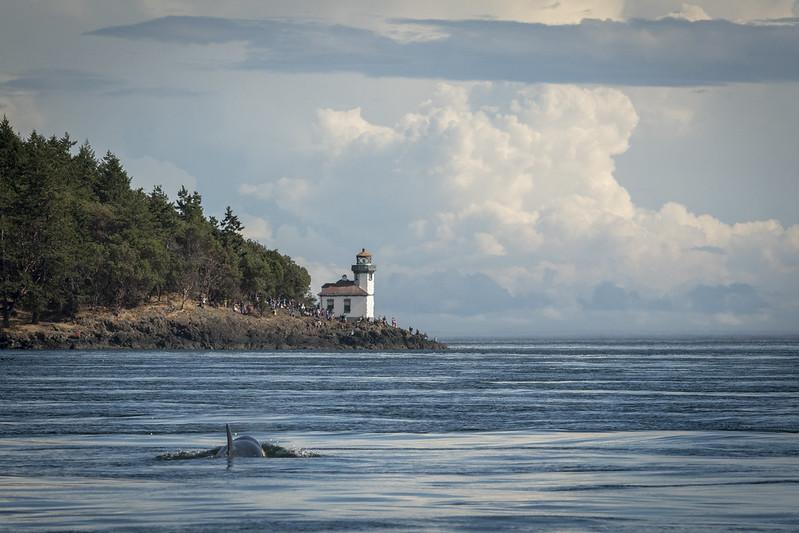 the Lime Klin Lighthouse on the San Juan Islands