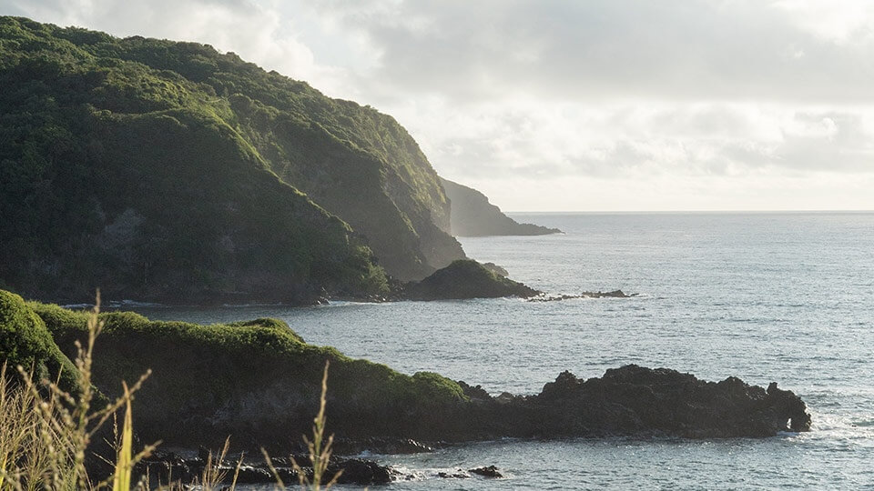 The Top 5 Things to do in Maui