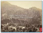 1860 StJohni in Wilderness