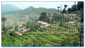 A Hilly Villege Near Panuanaula-Briddh Jageshwar Road (Almora)