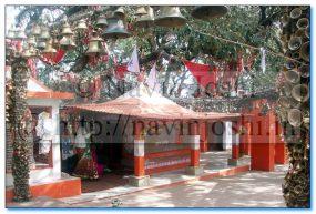 Goljyu Temple Ghorakhal (Nainital)