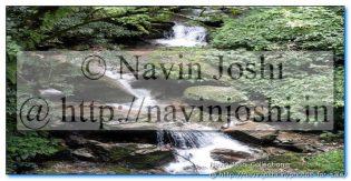 Water fall near Pangot (Nainital)