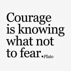 Courage is knowing what not to fear. -Plato