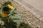 Декоративний камінь — галька і щебінь в саду