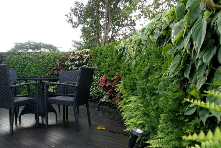 Вертикальные сады. Фото