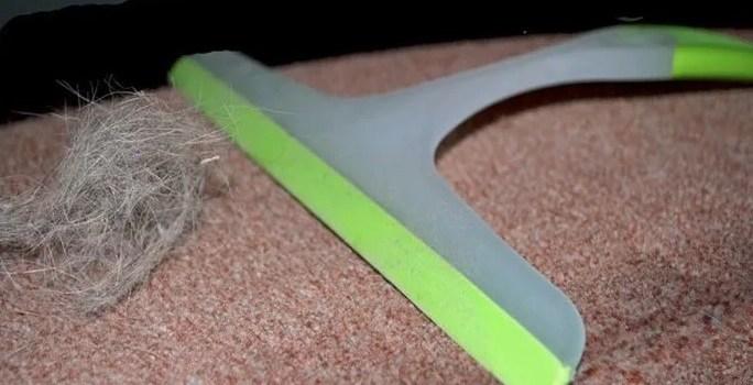 Удаления шерсти с ковровых покрытий ракель