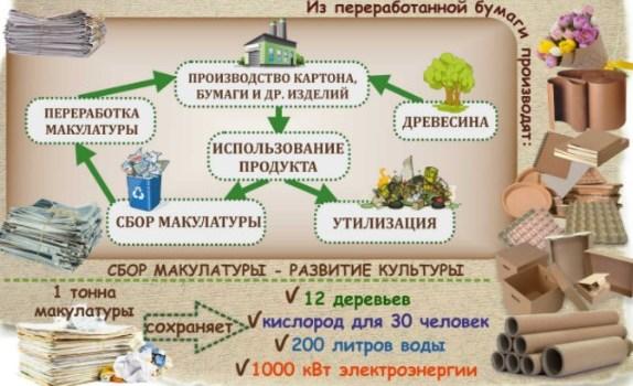 Прием макулатуры – важная составляющая защиты окружающей среды.