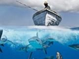 Navy Exam Myths Debunked