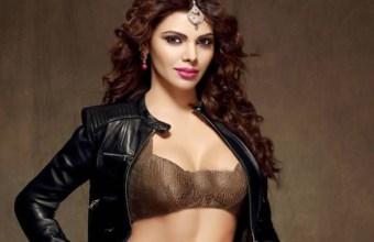 Sherlyn Chopra porn case
