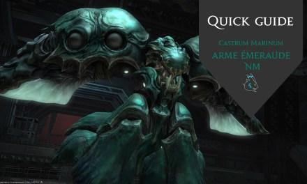 Castrum Marinum – Quick Guide NM