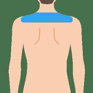 L body kata - 学割ボディ脱毛 4部位セット