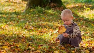 early child development through exploration