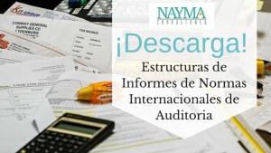 ¡Descarga! Informes de Normas Internacionales de Auditoria