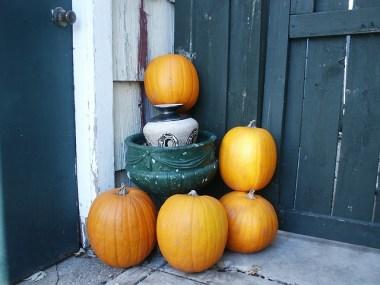 玄関のかぼちゃ