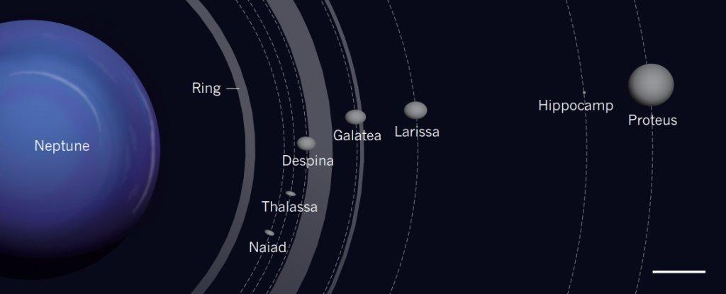 海王星に新たな衛星を発見! 探...