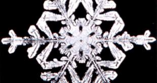 Snowflake8