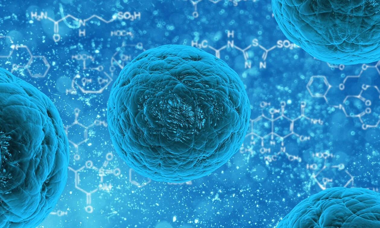 Βρέθηκε η θεραπεία του καρκίνου;
