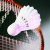 cropped-badminton.jpg
