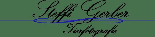 Logo Steffi Gerber Fotografie