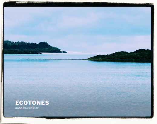 Ecotones-music art and nature