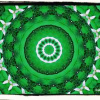 Trillium mandala
