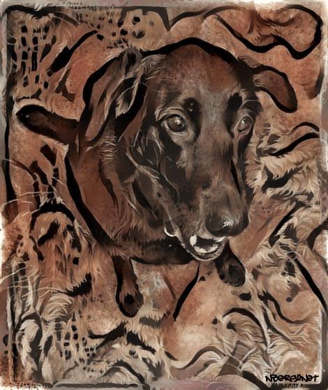 dog cave paint deepdream 2