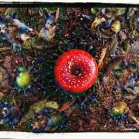 Amanita muscaria mushroom